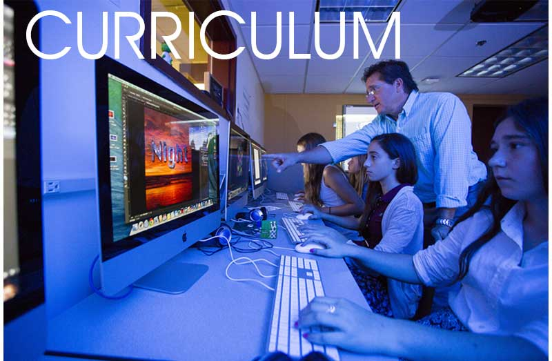 Curriculum-Button